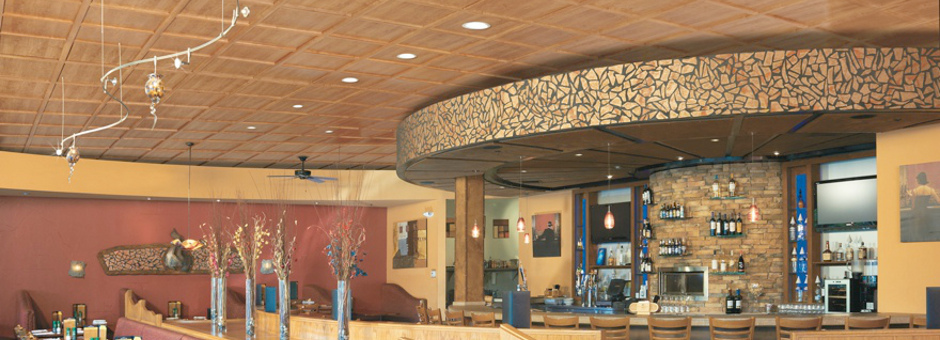 Commercial Ceilings Woodtrac