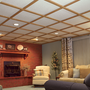 basement ceiling & Ceiling Gallery | WoodTrac